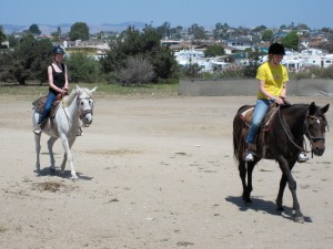 Horsing Around the Pismo Beach Dunes
